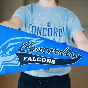 Wisconsin Private College Week/Taste of Concordia