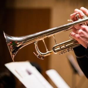 Trumpet and Organ Duo Veteran's Day Concert