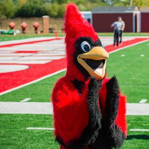 Cardinals sport camp: Men's lacrosse