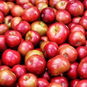 Create Your Own Carmel Apples + Card Games